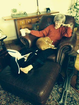 Healing kitty